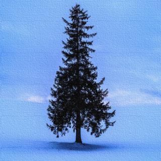 「雪の雨 -Vintage mix-」公開